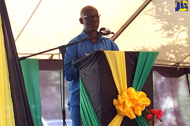 Man standing in front of a podium celebrating 133rd birthday anniversary celebrations of National Hero, His Right Excellency Sir Alexander Bustamante