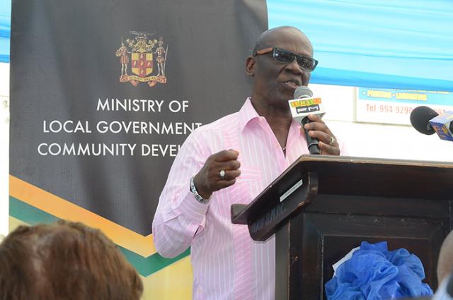 Hon. Desmond McKenzie speaking in front of a podium