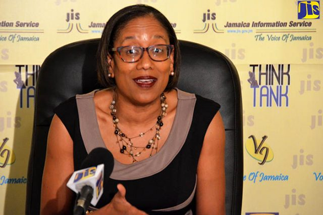 Development Bank of Jamaica (DBJ) General Manager discussing Investment Projects
