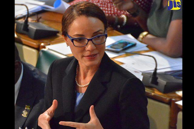 Kamina Johnson Smith speaking in the senate