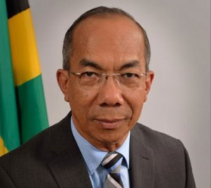 Minister without Portfolio in the Ministry of Economic Growth and Job Creation Horace Chang on potential of breadfruit