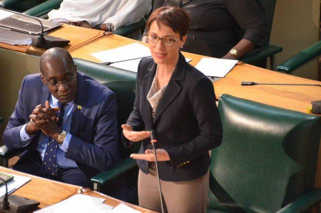 Senate Kamina Johnson Smith discussing telephone tax collection