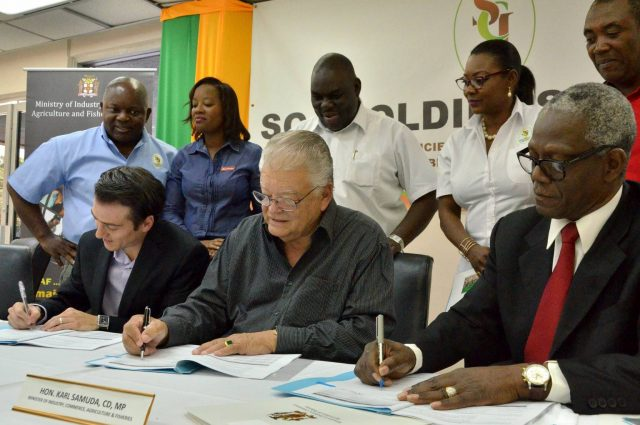 Lease signing for red stripe cassava cultivation
