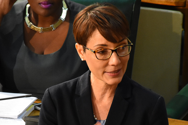 Kamina Johnson discusses the plea bargain bill to Vision Newspaper