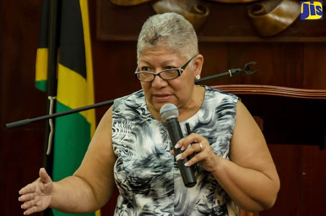 Chief director discussing national ID system to Vision Newspaper Jamaican News