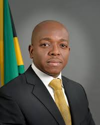 Photo: Pearnel Charles Jr. (Junior Minister of National Security)
