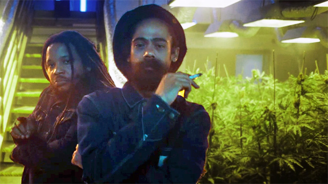 Photo: Screenshot of Damian Marley and Stephen Marley
